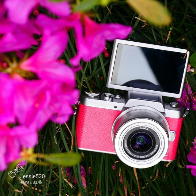 松下dmc-gf7kgk-p 微单照相机 粉色