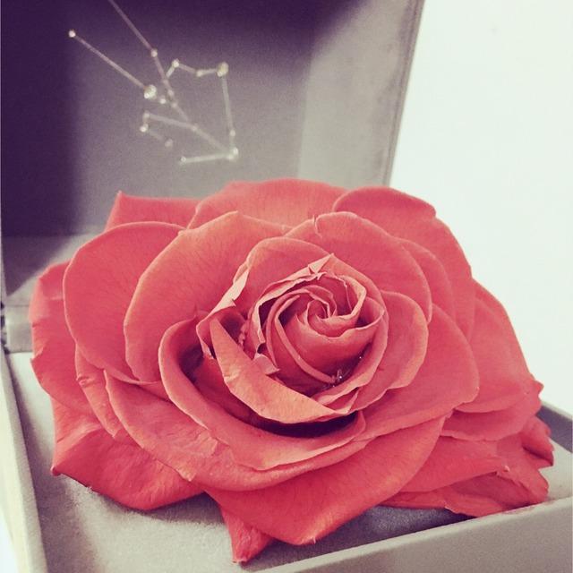 每次纪念日都能收到礼物 roseonly的都是厄瓜多尔永生玫瑰 每一图片