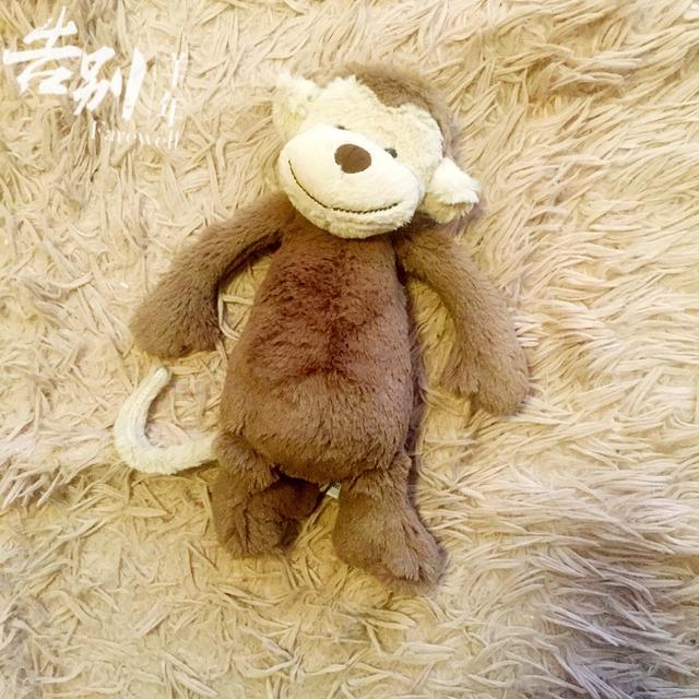 猴子,母婴,害羞动物系列
