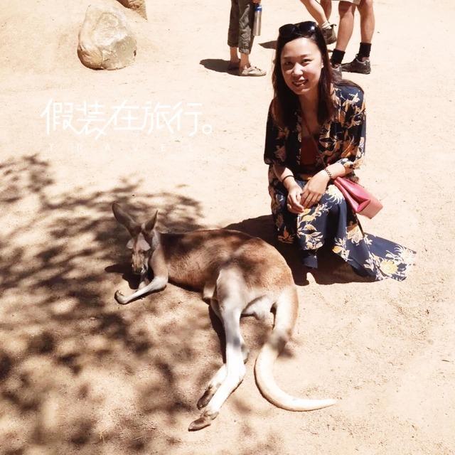 y(^_^)y最萌的动物在澳洲y(^_^)y