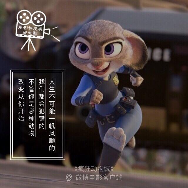 26      #不看会死#【用影评发现好电影-疯狂动物城】